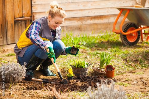 Slika na platnu Woman is planting or working on flower bed