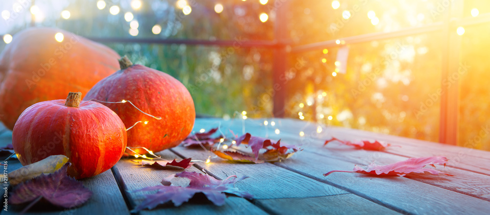 Fototapety, obrazy: autumn pumpkin background, thanksgiving holiday party decoration,
