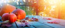 Autumn Pumpkin Background, Tha...