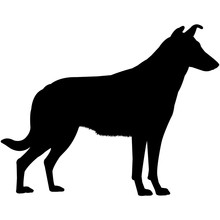 Collie (Smooth) Silhouette Vec...