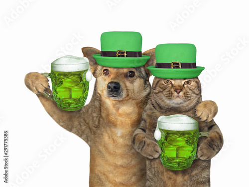 Photographie The cat and dog in green hats with beer celebrate St