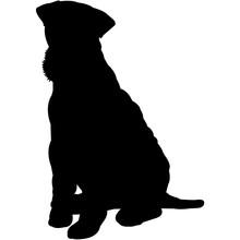 Lakeland Terrier  Silhouette Vector