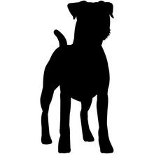 Parson Russell Terrier  Silhou...