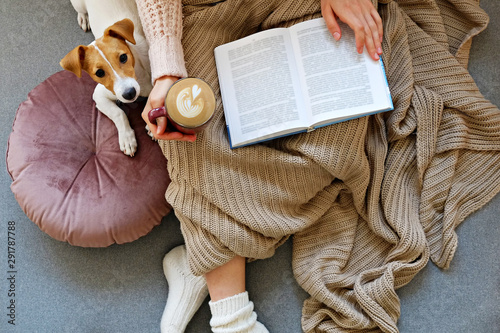Young woman and her adorable jack russell terrier puppy sitting on couch cozied up, covered with blanket. Lazy afternoon at home with loved pet concept. Close up, copy space, interior background. - 291787788