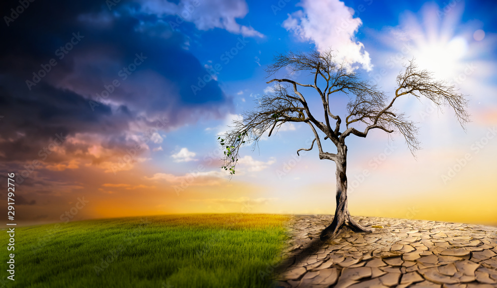 Fototapeta Climate change heat dryness withered earth