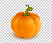 Vector Realistic Orange Pumpki...