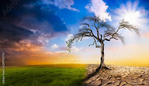 Obraz na plátně Climate change heat dryness withered earth