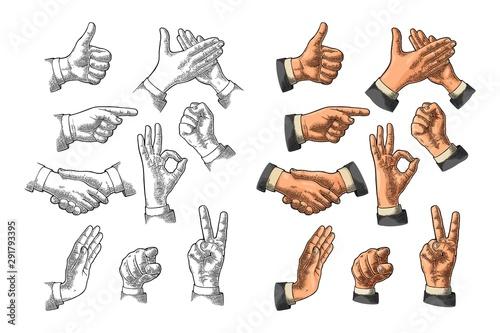 Vászonkép Male Hand sign. Like, Handshake, Ok, Stop, Middle finger, Victory