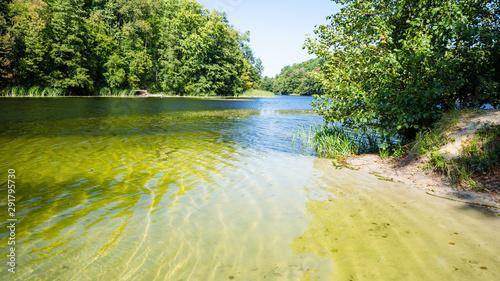 Papiers peints Rivière de la forêt Lake and shallow shore