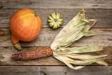 ornamental corn ear and winter squash