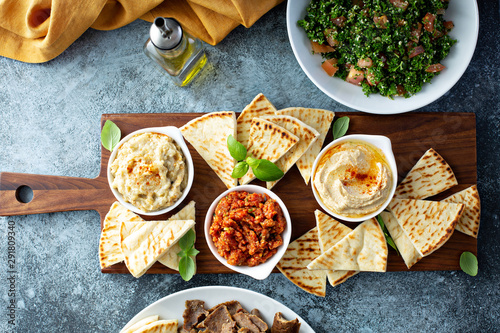 Mediterranean mezze board with pita, hummus, tomato dip and baba ganoush Canvas Print