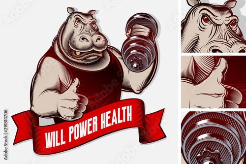 Muscled animal hippo makes exercise with dumbbell, shows thumbs up Poster Mural XXL