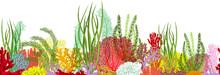 Vector Underwater Coral Reef H...