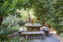 Wood Picnic Table In Nature Area