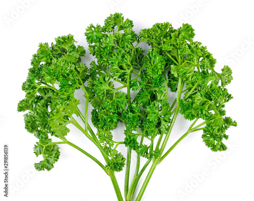 Fotografie, Tablou  parsley isolated on a white background. Top view