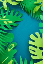Modern Paper Composition. Floral Tropical Handmade Frame Made Fr