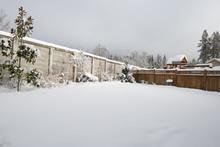 Back Yard Snow Fall