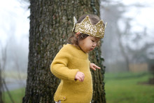 Toddler In Crown