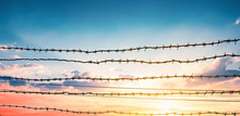 Human Rights Day Concept:  Barbed Wire On  Sunset Background