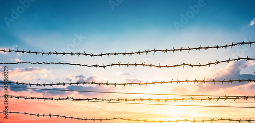 Photo Human Rights Day concept:  barbed wire on  sunset background