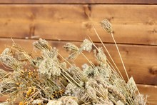 Armful Of Dry Grass Is On A Wo...