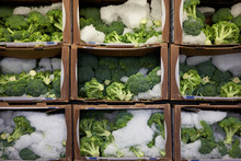 Fresh Broccoli Florets With Ice In A Grocery Store. Shelf Life Of Perishable Foods.