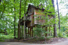 Treehouse./ Treehouse./ Treehouse. In The South Of Germany, Tripsdrill