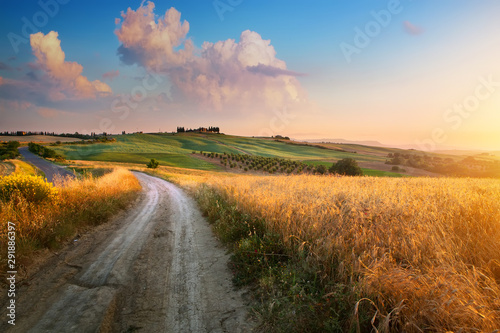 Fototapeta Italy autumn  countryside landscape, dirty road and farmland over sunset sky obraz