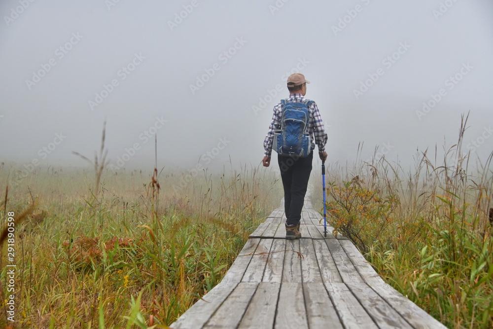 Fototapeta 秋の高原・木道を歩くハイカー