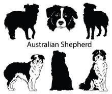 Australian Shepherd Set. Colle...