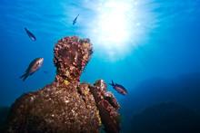 Submerged Roman Statue With Fish Swimming Around, Underwater Ancient Roman Ruins, Baia (Baiae), Campi Flegrei (Phlegraean Fields), Campania