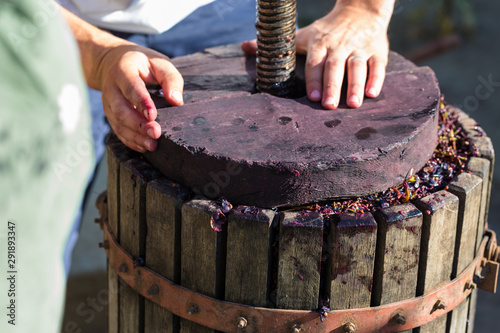 Winepress with red must and helical screw Canvas-taulu