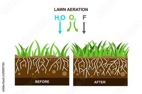 Vector illustration with lawn aeration. Canvas Print