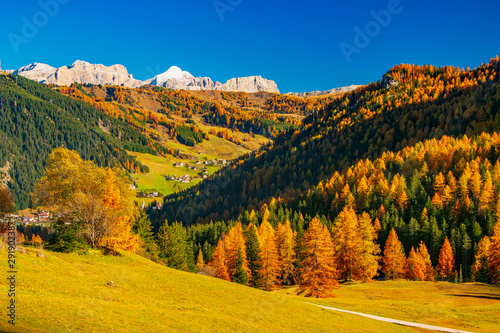 Fotomural  Autumb scenery with mountain hills and yellow trees illuminated by sun