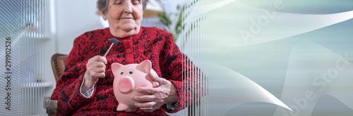Fototapeta Senior woman with piggy bank; panoramic banner obraz