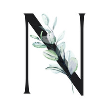 Letter N, Floral Alphabet With...