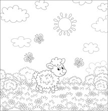 Cute Little Lamb And Flittering Butterflies Among Flowers On A Meadow On A Sunny Summer Day, Black And White Vector Illustration In A Cartoon Style For A Coloring Book