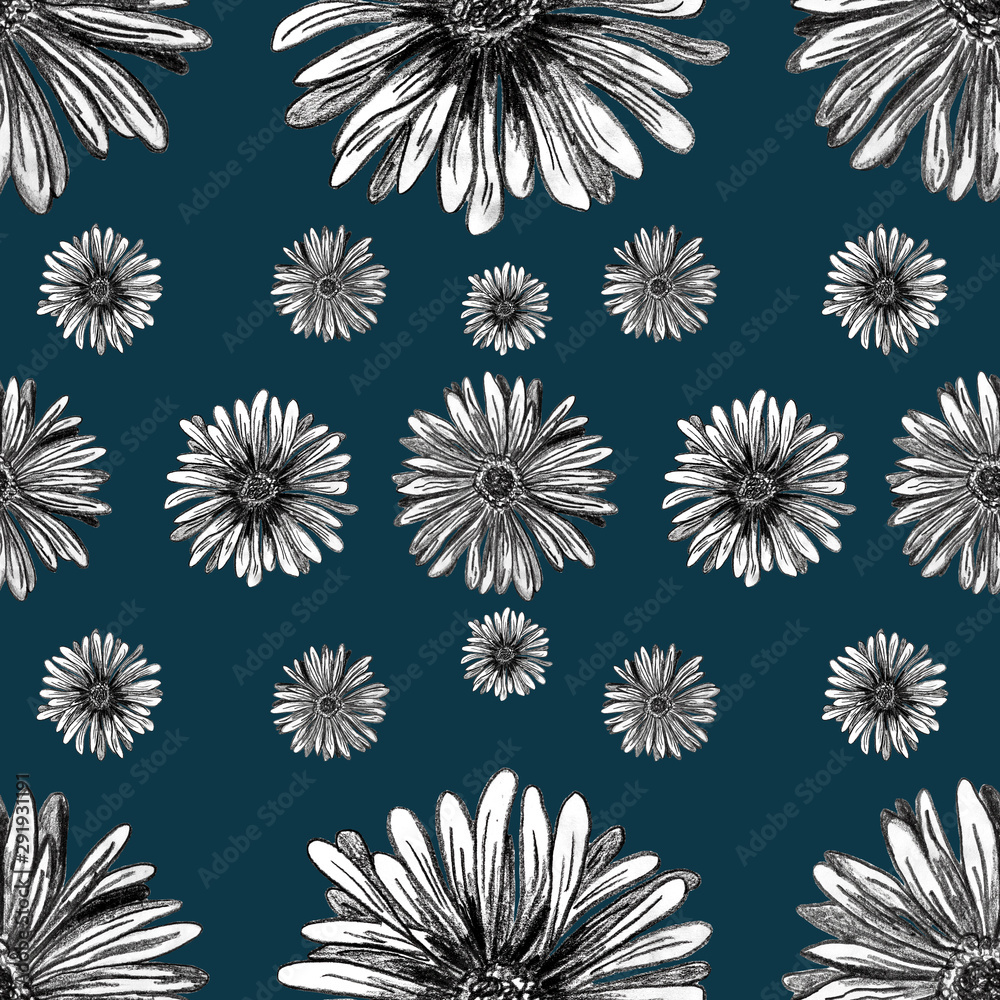 Fototapeta Hand drawn Gerbera flowers  - seamless pattern with blossom lines on navy blue background