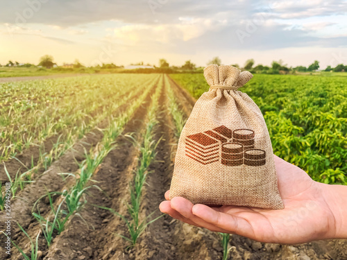 Fotografía The farmer holds a money bag on the background of plantations
