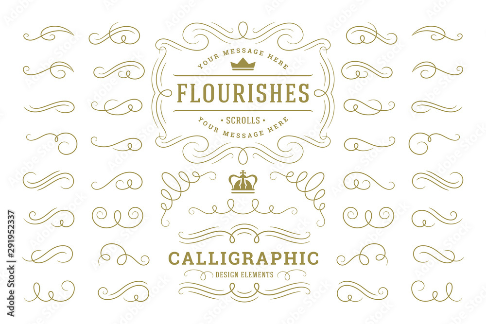 Fototapeta Calligraphic design elements vintage ornaments swirls and scrolls ornate decorations vector design elements.