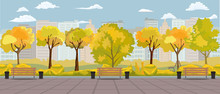 Cartoon Autumn Park Panorama With Walkway Bench And Bins. Fall Street Yellow Tree Path Panoramic Landscape. Vector Illustration.