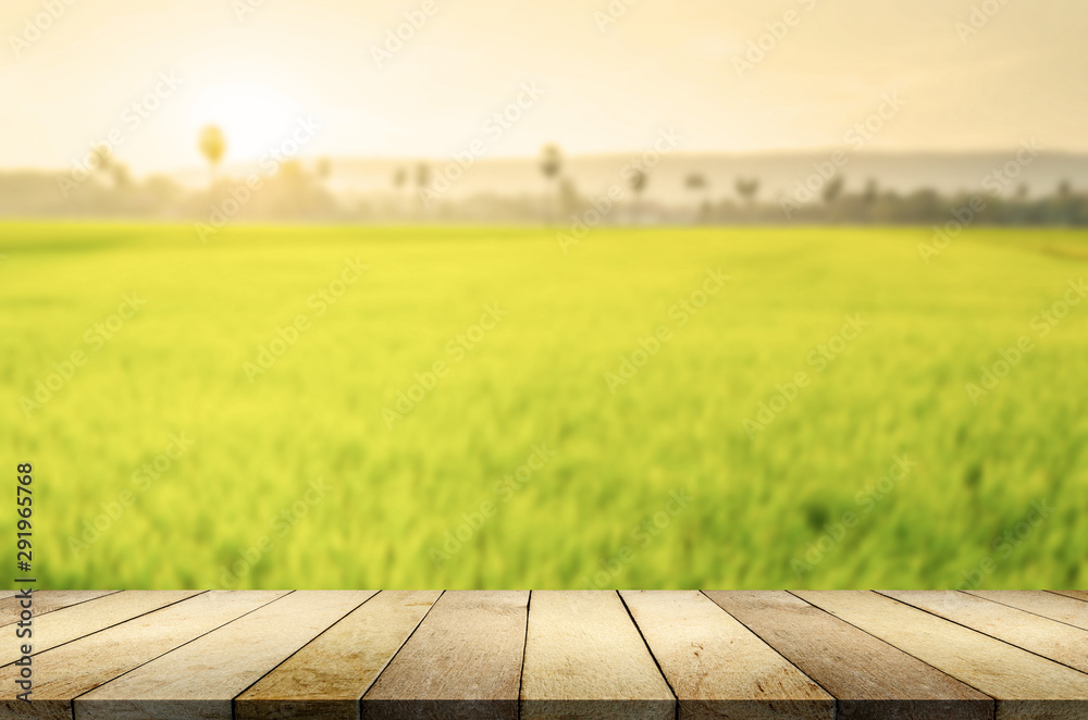 Fototapety, obrazy: Wood table on blurred nature background.