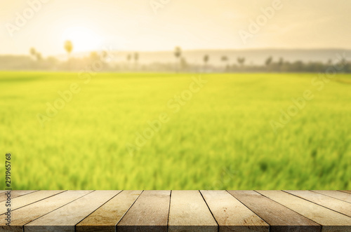 Wood table on blurred nature background. - 291965768