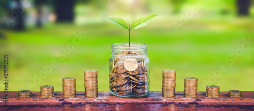 Fototapeta green plant growing on coin in glass jar and coin stack on wood table in park with blur nature background.business financial banking saving concept.investment profit income.marketing startup success. obraz