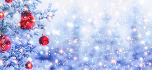 Fotografía  Border winter nature christmas background with frozen spruce branch with glitter lights, bokeh, snow