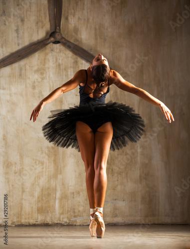 Fotografie, Tablou Young beautiful ballerina in black ballet tutu posing in dark studio