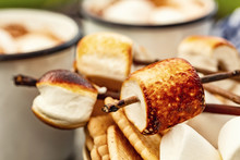 Skewers Of Roasted Marshmallow...