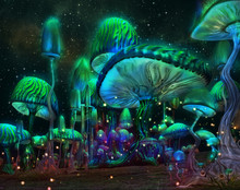 Luminous Mushrooms, 3d Cg
