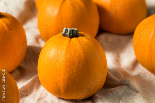 Raw Organic Mini Orange Pumpkins