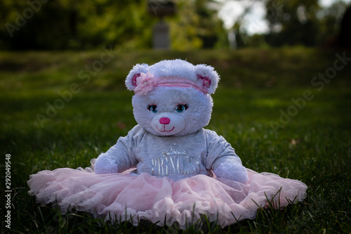 Teddy Bear Princess Sitting in the Grass